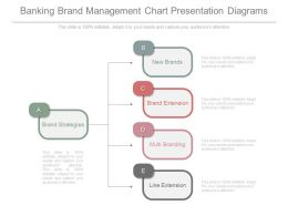 Banking Brand Management Chart Presentation Diagrams