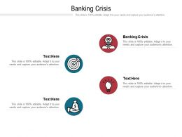 Banking Crisis Ppt Powerpoint Presentation Portfolio Example Introduction Cpb