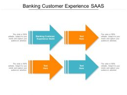 Banking Customer Experience SAAS Ppt Powerpoint Presentation Infographics Elements Cpb