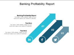 Banking Profitability Report Ppt Powerpoint Presentation Infographic Template Vector Cpb