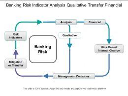 Banking Risk Indicator Analysis Qualitative Transfer Financial
