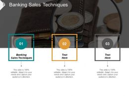 Banking Sales Techniques Ppt Powerpoint Presentation Ideas Format Cpb