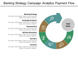 Banking Strategy Campaign Analytics Payment Flow 360 Peer Evaluation Cpb