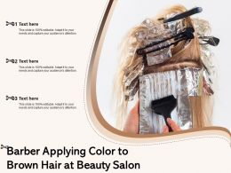 Barber Applying Color To Brown Hair At Beauty Salon