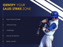 Baseball And Sales Strategy Strike Zone Selling Target