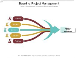 Baseline Project Management Ppt Powerpoint Presentation Slides Example Introduction Cpb