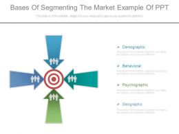 Bases Of Segmenting The Market Example Of Ppt