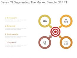 Bases Of Segmenting The Market Sample Of Ppt