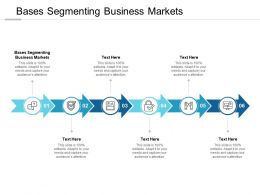 Bases Segmenting Business Markets Ppt Powerpoint Presentation Portfolio Guide Cpb