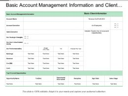 Basic Account Management Information And Client Opportunity Name Description