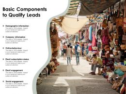 Basic Components To Qualify Leads