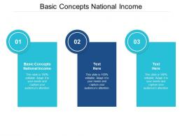 Basic Concepts National Income Ppt Powerpoint Presentation Gallery Graphic Images Cpb