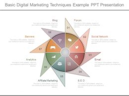 Basic Digital Marketing Techniques Example Ppt Presentation