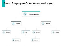 Basic Employee Compensation Layout Benefits Services Ppt Powerpoint Presentation Summary Ideas