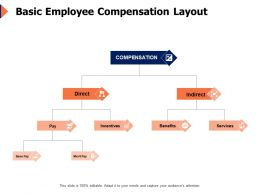 Basic Employee Compensation Layout Incentives Ppt Powerpoint Presentation Icon