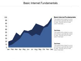 Basic Internet Fundamentals Ppt Powerpoint Presentation File Designs Cpb
