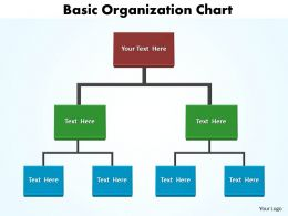 basic organization chart editable 5