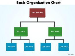 basic organization chart editable 5