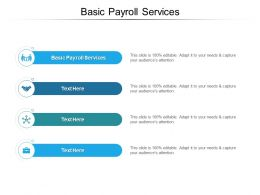Basic Payroll Services Ppt Powerpoint Presentation Show Examples Cpb