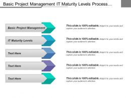 Basic Project Management It Maturity Levels Process Standardization