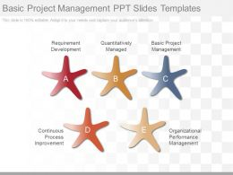 Basic Project Management Ppt Slides Templates