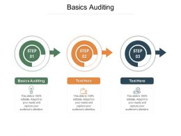 Basics Auditing Ppt Powerpoint Presentation Model Icons Cpb