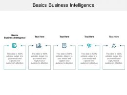 Basics Business Intelligence Ppt Powerpoint Presentation Portfolio Icons Cpb
