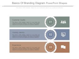 Basics Of Branding Diagram Powerpoint Shapes