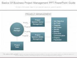 Basics Of Business Project Management Ppt Powerpoint Guide