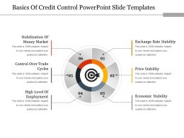 Basics Of Credit Control Powerpoint Slide Templates