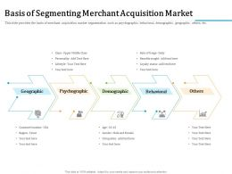 Basis Of Segmenting Merchant Acquisition Market Occupation Ppt Powerpoint Presentation Summary
