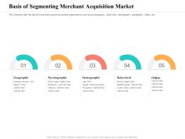 Basis Of Segmenting Merchant Acquisition Market Others Ppt Powerpoint Presentation Icon Rules