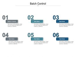Batch Control Ppt Powerpoint Presentation Show Guidelines Cpb