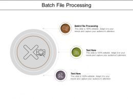 Batch File Processing Ppt Powerpoint Presentation Infographic Template Graphics Cpb