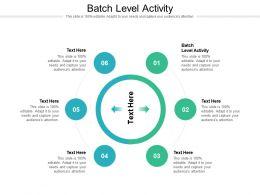 Batch Level Activity Ppt Powerpoint Presentation Ideas Outline Cpb