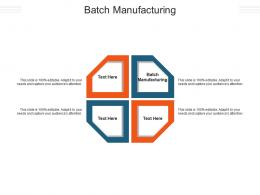 Batch Manufacturing Ppt Powerpoint Presentation Layouts Diagrams Cpb