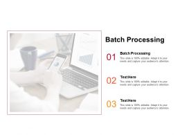 Batch Processing Ppt Powerpoint Presentation Information Cpb