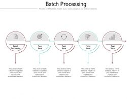 Batch Processing Ppt Powerpoint Presentation Pictures Designs Download Cpb