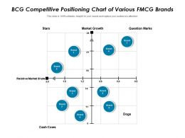 BCG Competitive Positioning Chart Of Various FMCG Brands