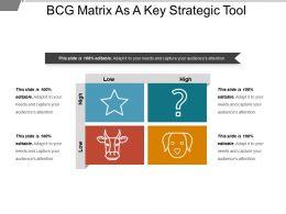 Bcg Matrix As A Key Strategic Tool Sample Of Ppt