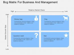 Bcg Matrix For Business And Management Flat Powerpoint Desgin