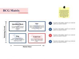 Bcg Matrix Ppt Summary Graphics Download