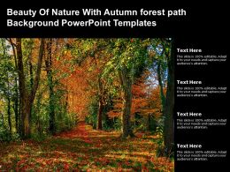 Beauty Of Nature With Autumn Forest Path Background Powerpoint Templates