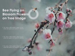 Bee Flying On Blossom Flowers On Tree Image