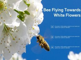 Bee Flying Towards White Flowers