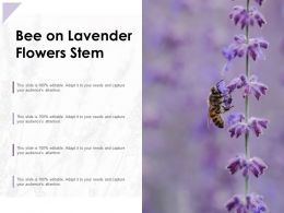 Bee On Lavender Flowers Stem