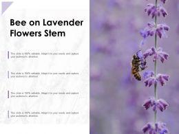 Bee On Lavender Flowers Stem
