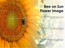 Bee On Sun Flower Image