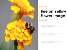Bee On Yellow Flower Image