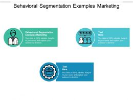 Behavioral Segmentation Examples Marketing Ppt Powerpoint Presentation Infographic Template Cpb